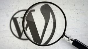 wordpress arama kaydı search meter